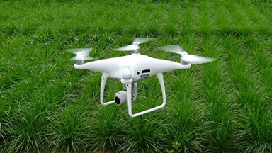 NARO and BANDAI NAMCO Research Inc. developed Smart-Breeding Evaluation Method Using Drones and AI.